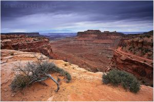 THEY CALL IT CANYONLANDS